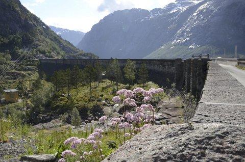 Nasjonal interesse: Detalj frå Ringedalsdammen - del av industrireisinga- og eventyret i Odda. Arkivfoto: M. Bleken