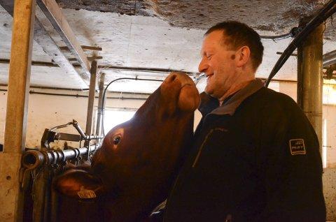 Kontakt: Å  ha husdyr kan og by på slike augneblikk. Vidar Reisæter med ei av dei  kosete kyrne han har på båsen.