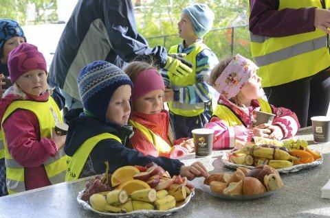 Illustrasjonsfoto av barnehageborn på besøk til Røldal skule.
