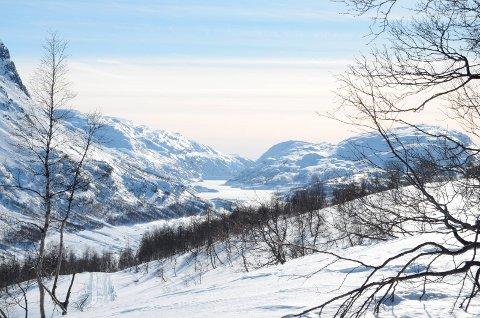 Valldalen i Røldal er no blitt stølsdal.