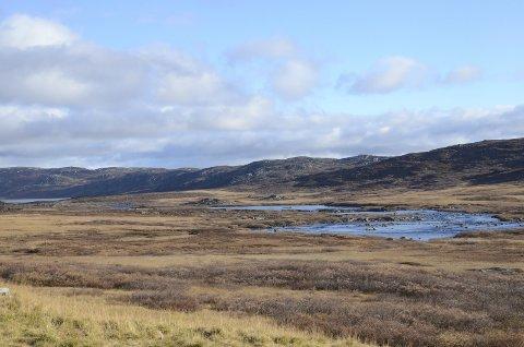 Hardangervidda: Illustrasjonsfoto.arkiv