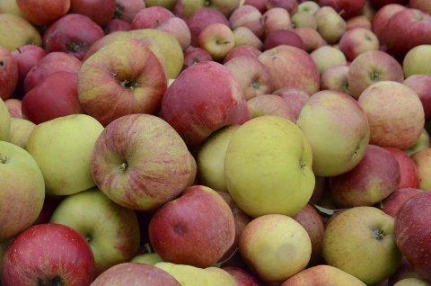 Fruktdagar: I slutten av månaden vert det arrangert fruktdagar på voss.arkivfoto