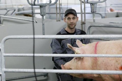 MED MATFAR: Leif Rune Sundfør og konen Solvor Sundfør har bygget nytt grisehus. Her sammen med en av purkene de fikk sist torsdag.  FOTO:  JAN KÅRE NESS