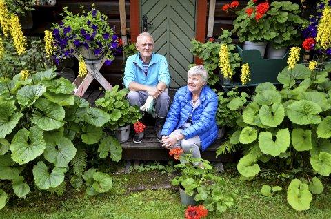 Huset i Hagen: Åse og Svein Sandvik tar en pause på hagehustrappa med kongelys, geranium og andre sommerblomster rundt seg.Alle Foto: Toril Risholm