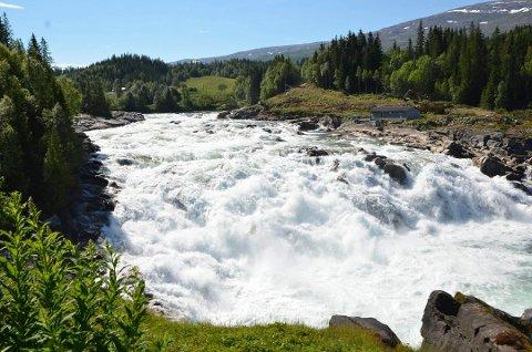 I går ble det målt 35,6 grader ved Laksforsen. Denne temperaturen deler nå førsteplass med den høyeste temperaturen som noen gang har blitt målt i Norge.