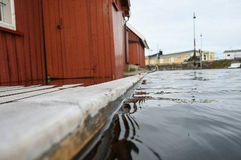 Slik så det ut like før vannet steg over bryggene ved Blindtarmen forrige uke.