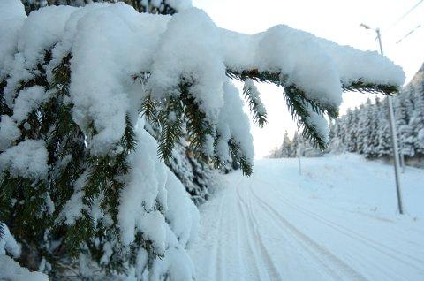 Ifølge meterologen er det lov å håpa på at snøen ikkje forsvinn heilt i låglandet. Til veka blir det mildare, men neste helg ser det ut til at det skal bli kaldt igjen.