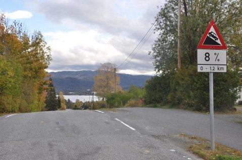 FIKSER: Statens vegvesen skal reasfaltere denne veien på Darbu.