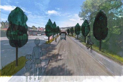Beplantning: Flere av innspillene til hva som kan gjøres i Sylling sentrum mente at trærne som Rambøll hadde med i forslaget sitt absolutt ikke er ønsket. Busker derimot er greit, for de tar ikke utsikten over Holsfjorden.