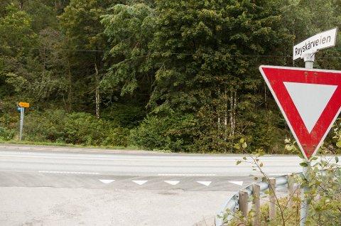 HIT, MEN IKKE LENGER: Planene for ny E39 er klappet og klare fram til Røyskår. Men de statlige planene videre lar fortsatt vente på seg.