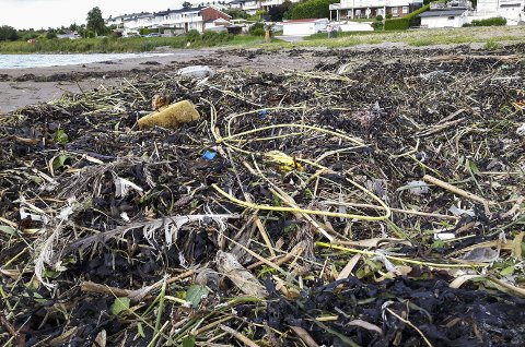 FORURENSING: Plast, plasttråder og sprengtråder fra dumpingen av steinmasser i Værlebukta drev i land på strender i distriktet.  Foto: Bjørn Hansen
