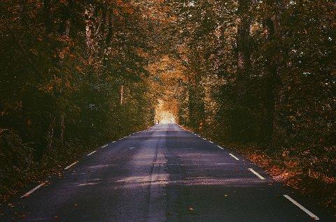 HØST: Helgen 11. til 13. oktober vil by på all slags høstvær.