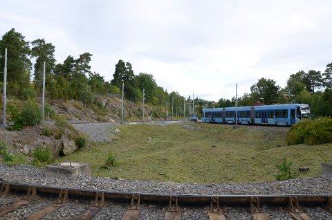 FLATHOGST: Var det virkelig nødvendig å hugge alle trærne ved Ljabru trikkestasjon, undrer Karin Kinge Lindboe. Foto: Nina Schyberg Olsen