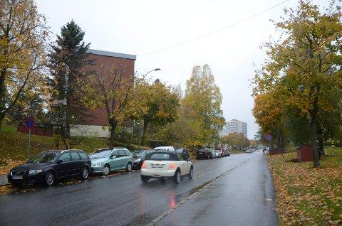 OMSTRIDT: Sykkelfeltprosjektet er vedtatt, men omstridt fordi gateparkering og trær forsvinner, i tillegg til at lokalpolitikere mener det er feil strekning å lage sykkelfelt på. Arkivfoto