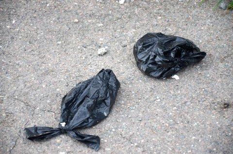 TA DEN MED DEG: Mange bruker hundeposer, men alle er dessverre ikke like flinke til å kaste dem i en søppelkasse. Arkivfoto