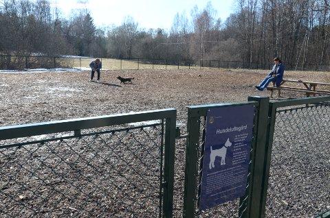 POPULÆR: Hundeparken på Hallagerjordet på Ljan er blitt et samlingssted for hundeeiere i distriktet. Nå jobber Bymiljøetaten med å finne ut hvor de kan opprette nye tilsvarende friområder for hunder i Oslo. Arkivfoto: Nina Schyberg Olsen