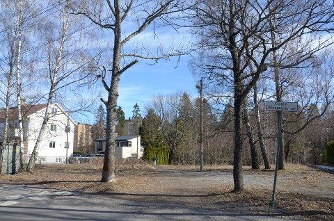 BARNEHAGETOMT: Omsorgsbygg vil bygge barnehage i Kaptein Oppegaards vei 19b og 21, som de senere årene har fremstått som et litt forsømt grøntområde.
