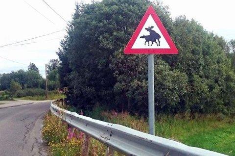 ELG: Dette skilt av parrende elger dukket  opp i Harstad sommeren for to år siden.