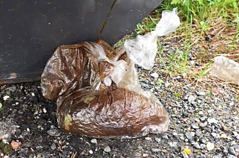 DRITT: Avføring i plastposer ved montessoriskolens private søppelkontainer.