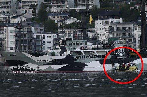 BORDET: Her border politiet i Tromsø Sea Shepherd-skipet Sam Simon, like etter at det lot ankeret gå i Tromsøysundet sent mandag kveld. Foto: Torgrim Rath Olsen