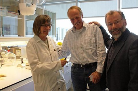 ILLUSTRASJONSFOTO: Laborant Hege Tøllefsen som her har selskap av administrerende direktør Svein Lien og forskningsdirektør Rolf E. Engstad (til høyre).