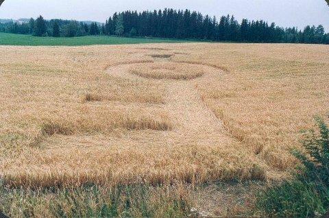 SPOR I JORDET: På Elton Gård på Raufoss var det spor etter det mange trodde var en UFO i 1997. Hvordan hadde ringene kommet dit? Det var et mysterium som hele landet prøvde å finne svar på.