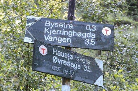 DUMPET I ØSTMARKA: Katten ble dumpet i skogen ved parkeringsplassen ved Bysetermosen onsdag formiddag.