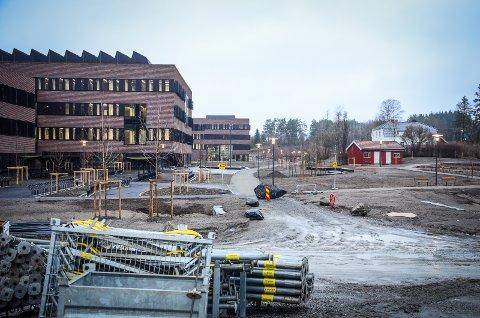 KORONA-BREMS: Aktiviteten på byggeplassen er redusert på  grunn av korona. Det nye veterinærbygget til 8 milliarder kr blir ikke ferdig til studiestart høsten 2020.