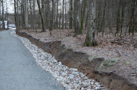 I forbindelse med graving av grøfter i Bøkeskogen er det også skavet av jord tett inn til gravhauger.