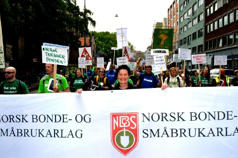 TAR EN NY PERIODE: Merete Furuberg fra Hedmark tar gjenvalg som leder av Norsk Bonde- og Småbrukarlag. (Foto: Bjørn-Frode Løvlund)