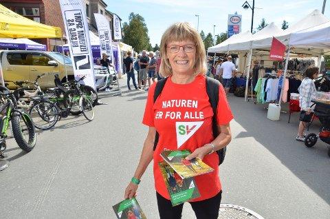 Karin Andersen, Hedmark SV