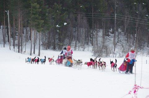 SPORTSLIG SUKSESS: Jon Anders Kokkvoll forteller at de nye reglene for hviletid i Femundløpet har vært bra for hundene. Bildet viser møtende spann på veg inn og ut fra Tolga.