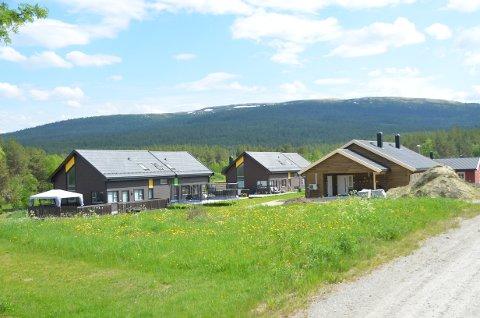 Jørgensmoen, Tynset, er bygget og utviklet på jordbruksareale.