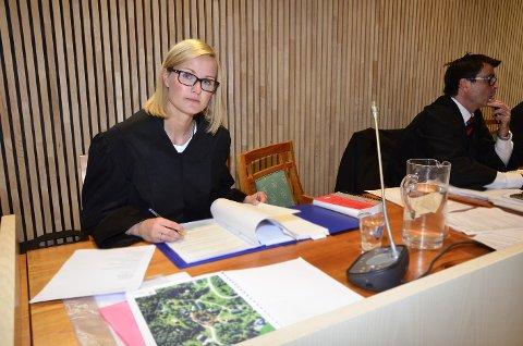 Aktor, politiadvokat Kathrine Frøysa, og forsvarer Einar Grape, under ankesaken i Hålogaland lagmannsrett.