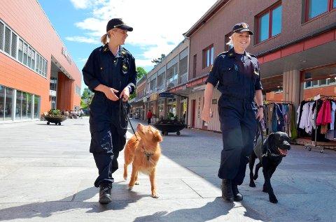 PENSJONISTER: Narkotikahundene Hektor (t.v.) og Gjermund har nå blitt pensjonister. Her på et bilde fra Brumunddal sentrum sommeren 2013, sammen med hundeførerne Jane Brendhagen (t.h.) og Tina Edvardsen.