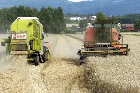 Tirsdag tenner bønder bål for å markere protest mot jordbruksmeldingen. Illustrasjonsfoto: Frode Johansen