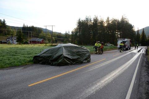 Tre personer mistet livet i en frontkollisjon mellom to personbiler på riksvei 7 i Torpo i Ål kommune i Hallingdal natt til mandag.
