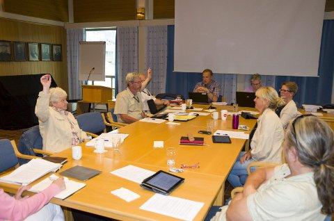 Geir Olsen (H) og Ida Beate Rasmussen (H) stemte ja til kommunesammenslåing mens de fem øvrige i formannskapet stemte nei.