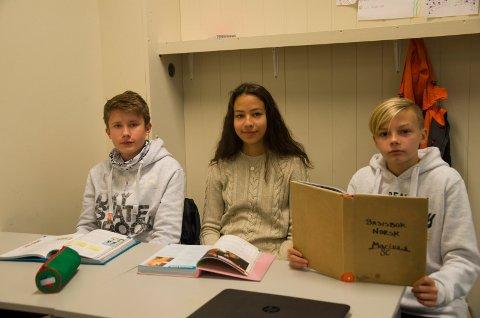FORNØYDE: Elevene Sander Trume, Andrea Sjaavaag og Oscar Halvorsen synes det er bra å gå på Hov ungdomsskole, men skulle gjerne ønsket seg mer variert undervisning.