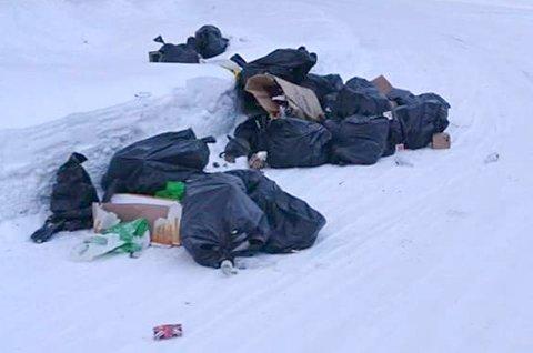 Dette søppellasset ble funnet i Tajegata på Hensmoen torsdag morgen.