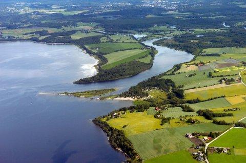MILJØGIFT: Tester viser at det vil være trygt å bade i vannet i Tyrifjorden, Storelva og Randselva, men fisk og andre organismer inneholder høye konsentrasjoner av miljøgiften PFAS.