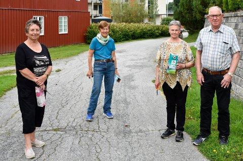 SNEGLE-MAFIA: F.v. Liv Torill M. Braathen, Randi Bergan, Turid N. Haraldseth og Erik Haraldseth er naboer og har sett seg lei av brunsnegler. På kveldene går de turer for å drepe sneglene.