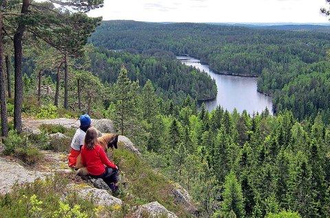 STORE VERDIER: Naturen i Østmarka har nasjonalparkkvaliteter, og 50 til 70 kvadratkilometer kan få slik vernestatus. Her er Mosjøen og deler av Østmarka naturreservat fotografert fra Tonekollen. Foto: Even Saugstad
