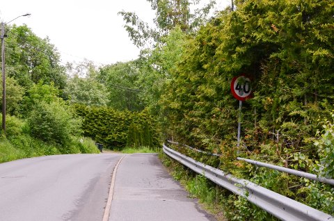 GJENGRODD: 40 soneskiltet er vanskelig å få øye på, det er hekkeier som er ansvarlig for å holde skiltet adskilt fra hekken.
