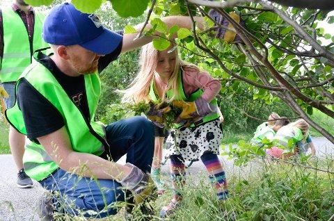 Tar jobben seriøst: – Dette er hardt! sier Lillian Jakobsen (6). Daglig leder i Krokenskogen Kanvas-barnehage, Erik Svenungsen, holder grenen oppe så hun kommer fram til burotplantene.