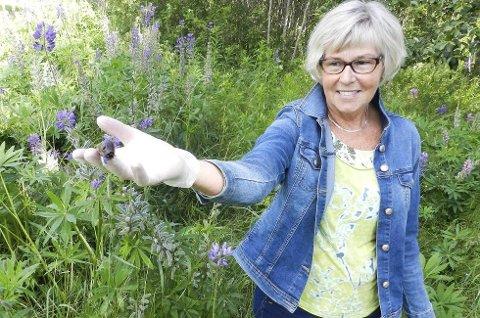 Anne-Lise Martinsen med en brunsnegle. Legg merke til lupinbladet i sneglens munn.