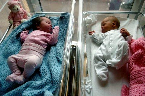 Det er slike små nurk som mange ufrivillig barnløse par håper på å få gjennom eggdonasjon.