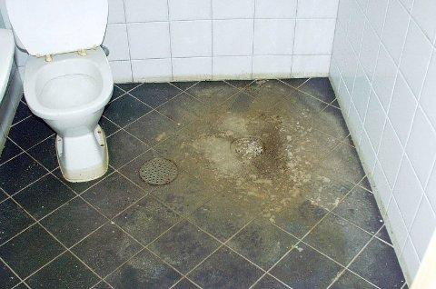 Dersom rørnettet overbelastes kan kloakk og avløpsvann strømme inn i kjelleren din.