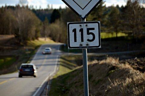fylkesvei 115 skiptvet