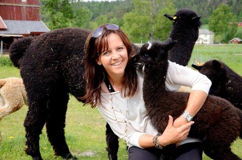 ALPAKKA: Anne Line Nubberud i Sigdal driver stort med alpakka på hjemgården. Nå er hun også med å starte Norges første alpakkaslakteri.